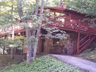 Our Greyt Escape - 711 Mountainside Road, Canaan Valley