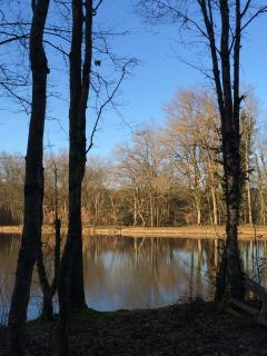 The peaceful lake in the nearby woods.