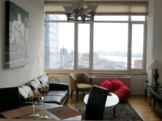 Arty and Bright 1 Bedroom Condo in Midtown West, New York