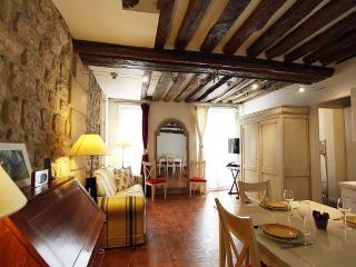 Bel appartement Saint-Germain/Seine, Parijs