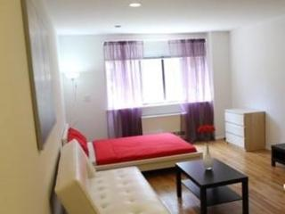 Beautiful Studio Unit Near Subway and Shopping Area, New York City
