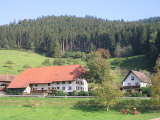 Vacation Apartment in Elzach (# 6162) ~ RA62934