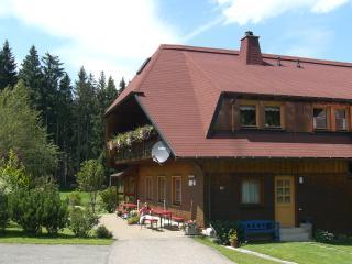 Vacation Apartment in Schonach im Schwarzwald (# 6509) ~ RA63208