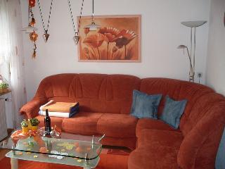 Vacation Apartment in Schonach im Schwarzwald (# 6619) ~ RA63323