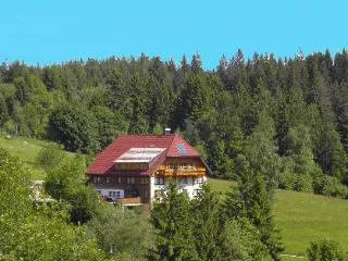 Vacation Apartment in Schonwald (# 7111) ~ RA63693, Triberg