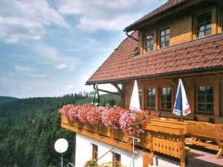 Vacation Apartment in Schonach im Schwarzwald (# 6675) ~ RA63363