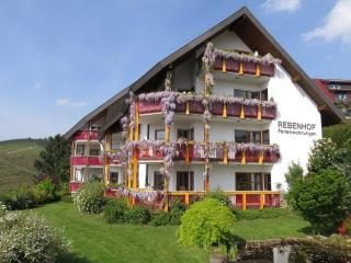Vacation Apartment in Sasbachwalden  (# 6771) ~ RA63447