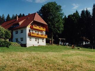 Vacation Apartment in Triberg im Schwarzwald (# 6774) ~ RA63482, Brigach