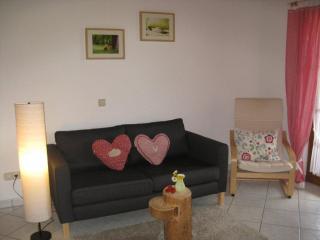 Vacation Apartment in Schonach im Schwarzwald (# 6993) ~ RA63575