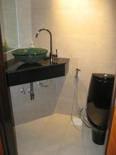 Washroom off Living area