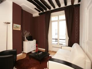 Luxurious Marais 1 Bedroom (303)