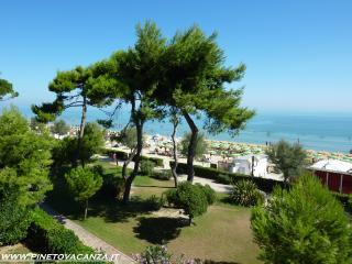 Appartamento Fronte Mare Pinetina 3 Pineto Vacanza