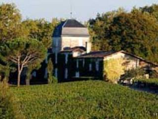 Vineyards within easy reach of the house (from 5 minutes, to an hour drive).