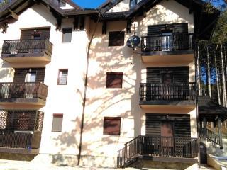 Apartment Bubica, Zlatibor