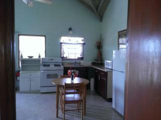Vista de la cocina desde la parte trasera de la habitación.