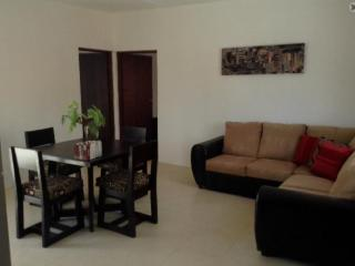 Fully furnished modern apartment in Merida north.
