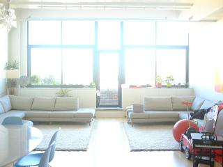 Giant Modern Apt/ 2 Bedrooms/2 Baths, Brooklyn