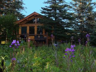 Bear Paw Adventure - Moose Cabin