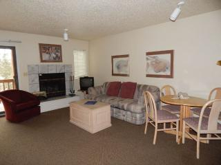 Timber Run Vista Unit 103, Winter Park