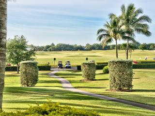 Vicenza Golf Condo at the Lely Resort  *Golf View*, Nápoles
