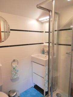 Newly renovated (Dec 2015) bathroom with shower, wash basin, shampoo/conditioner/gel dispenser
