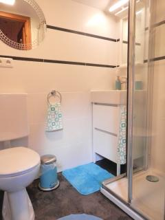 Newly renovated (Dec 2015) bathroom with shower, wash basin, shampoo/conditioner/gel dispenser