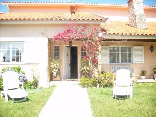 5 Bedroom Countryside Villa, Anadia
