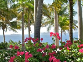 Rhumb House - Ideal for Couples and Families, Beautiful Pool and Beach, Tortola
