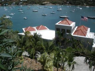 VI Friendship Villa - Ideal for Couples and Families, Beautiful Pool and Beach, Cruz Bay
