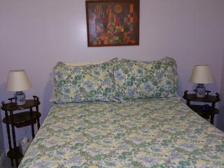 1 bedroom Garden apt near harvard/MIT
