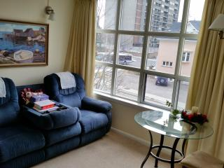 Luxury Condo in the heart of the city, Kitchener