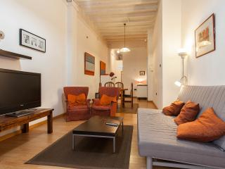 Spacious Family Apartment with Patio: Centre, Barcelona