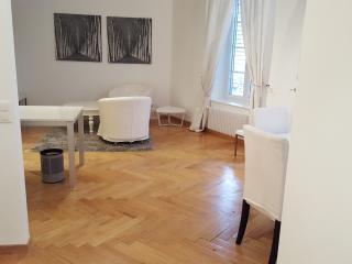Somptueux appartement en Vieille ville, Genf