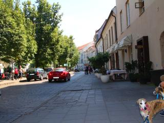 German 18-3A Luxury Vilnius Apartment