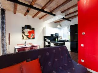 2 Bedrooms Spacious Barcelona Center Flat, Barcelone
