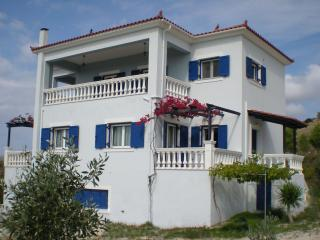 Beautiful Villa Dorothea with pool close to beach, Lixouri