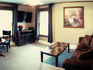 Beautiful 2000sq/ft Park Ave Condo!, Rochester