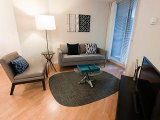 1 bedroom furnished apartment downtown Toronto