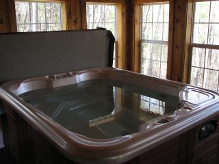 Indoor hot tub with great views of the surrounding woods