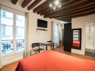 RENOVATED STUDIO 21M2, PARIS CENTER, MONTORGUEIL