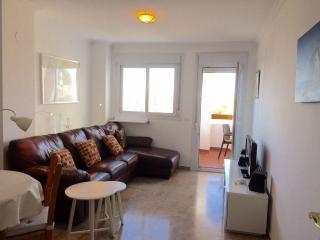 Penthouse Flat, Estepona Port