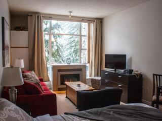 Studio  w/ Pool & Hot Tub next to Adventure Zone!, Whistler