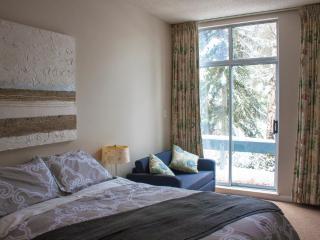 'Glacier Lodge' Hotel Room w/ Pool & Hot Tub next to Adventure Zone!