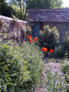 In late April, May, and early June the garden flowers and wild flowers are at their best.