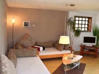 Vacation Apartment in Schonach im Schwarzwald (# 6688) ~ RA63307
