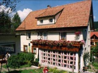 Vacation Apartment in Schonach im Schwarzwald (# 6645) ~ RA63393