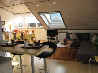 Vacation Apartment in Stockach (# 6664) ~ RA63377