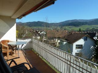Vacation Apartment in Waldkirch (# 6732) ~ RA63374
