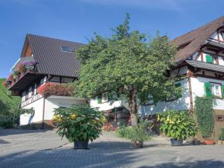 Vacation Apartment in Sasbachwalden  (# 6690) ~ RA63419