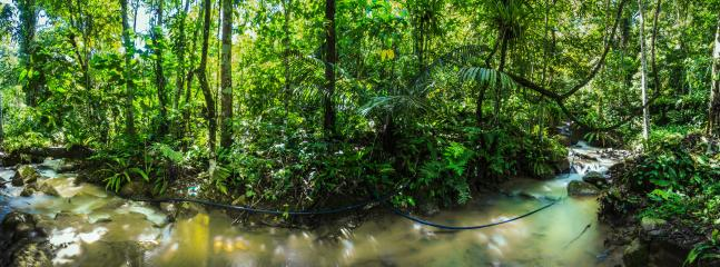 Panaroma photo of the stream at the property ground.